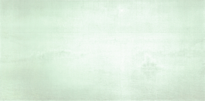 Qui Shihua, Untitled 2007, 200x402