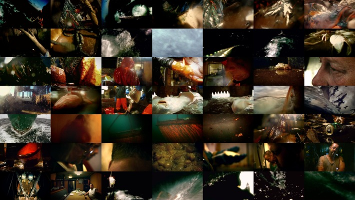 Mosaic of images from Leviathan, Lucien Castaing-Taylor and Verena Paravel 2012